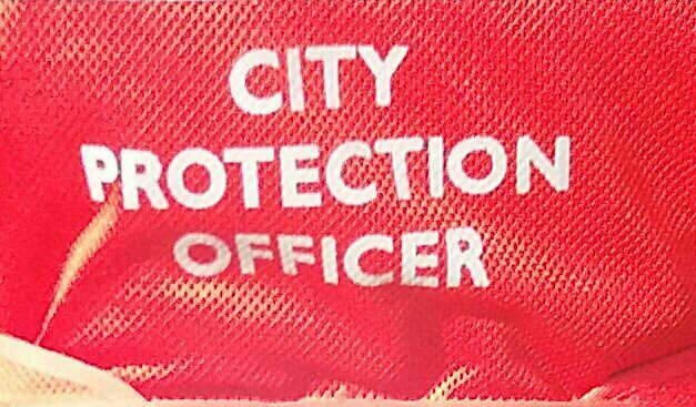 City Protection Officers (CPOs) – Monthly Report – December 2019
