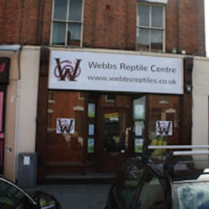 Webbs Reptile Centre Northgate Street Gloucester Four Gates